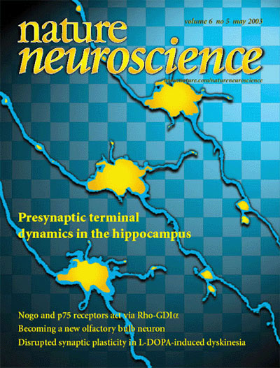Synaptic Plasticity and Repair Group (Vincenzo De Paola) – Cover article in Nature Neuroscience 6(5), 2003