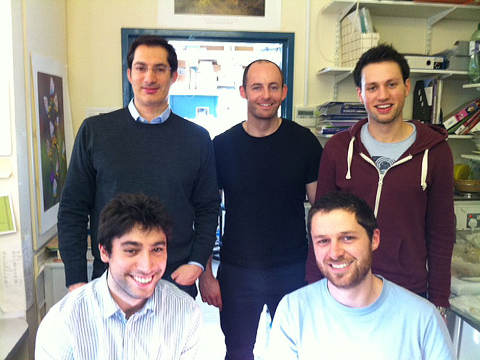 Synaptic Plasticity and Repair Group (Vincenzo De Paola) – The Group, 2013