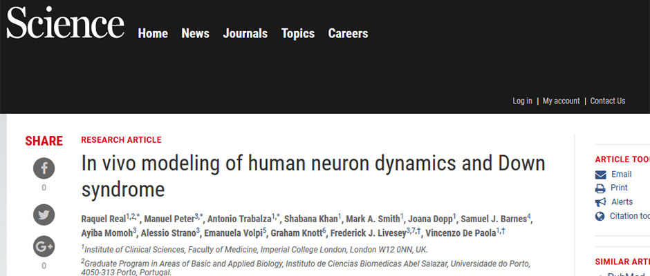 New paper in Science on the modelling dynamics of human brain cell transplants
